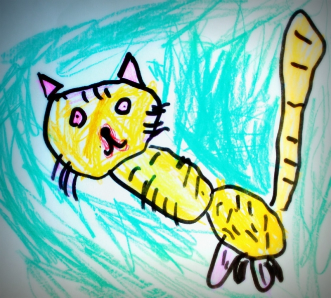 A cat by Claire