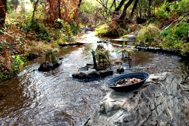 Panning for gold near Jamestown