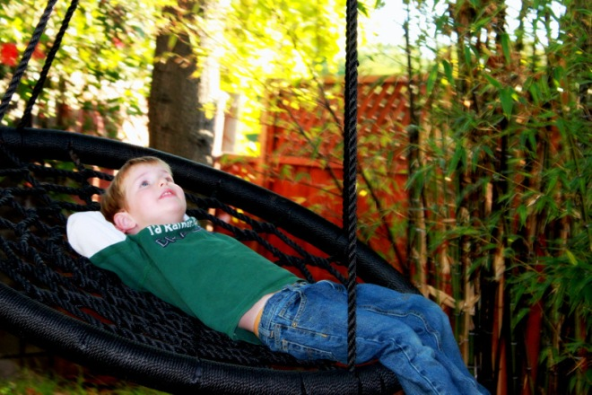 Soren swinging in the back yard on Thanksgiving weekend