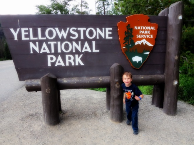 This is me at Yellowstone National Park. We saw a marmot, 23 bison, some deer, elk, and many waterfalls.