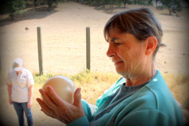 Mom got to hold an ostrich egg