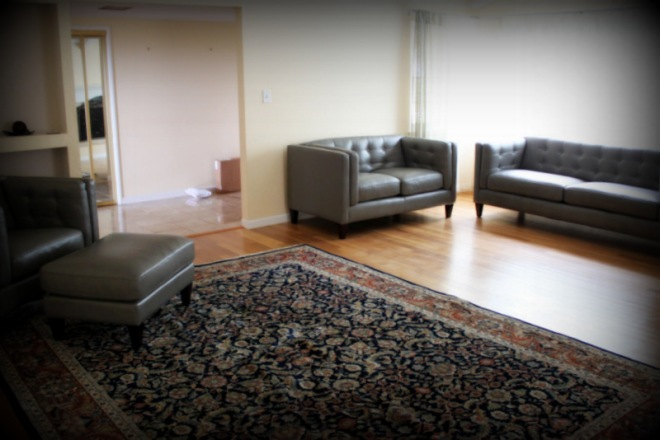 Our new living room furniture, and an old rug that we haven't had a place to use before now